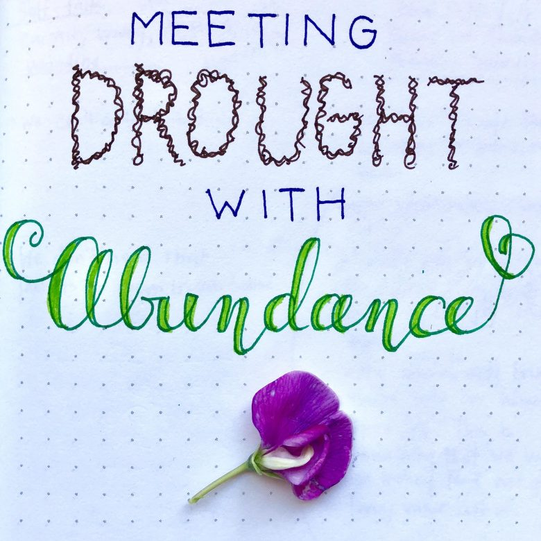 Meeting Drought With Abundance Part 1